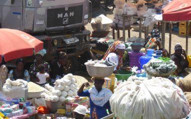 Africa African economies