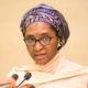 Coronavirus: Why Nigeria Government Needs $7 Billion Loan