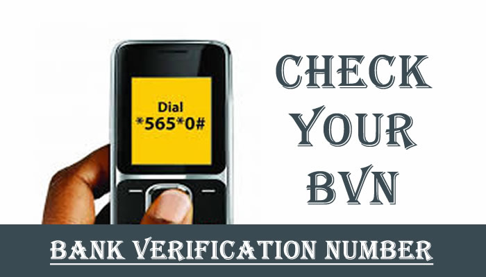 Bank Verification Number, how to check bvn details online, how to change number on bvn, how to check my bvn date of birth, disadvantages of bvn, how to get bvn number, how to check bvn on diamond bank, bvn online registration, how to check my bvn date of birth online