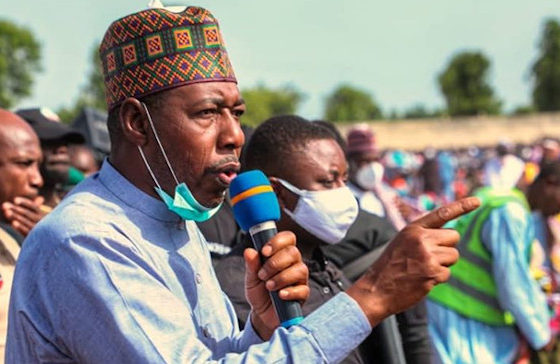 Zulum, babagana umara zulum family, borno state governor phone number, zulum news today, babagana umara zulum photos, babagana umara zulum wives, babagana umara zulum phone number, maiduguri borno state governors office address,
