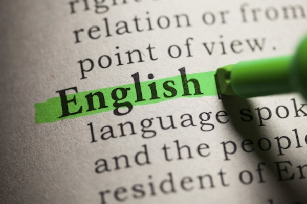 English Language The Actor And The Action: Noun-Verb Agreement In English—Dr Ganiu Bamgbose