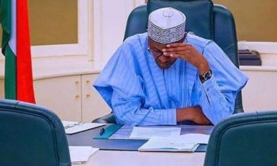 President Muhammadu Buhari PDP APC APC, PDP, APC News, PDP News, President Buhari, edo election, edo 2020, pdp, Self-Certification Forms