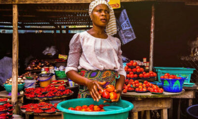 National Young Farmers Scheme, Nigeria's Inflation Rate Hits 14.89% In Nov 2020 As Food Inflation Spikes