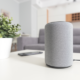 Smart Speakers Provide Accessibility to Blind or Visually Impaired, But Design Prevents Full Use Brandnewsday