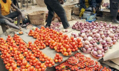 tomato price in nigeria, prices of tin tomatoes in nigeria, price of sachet tomatoes in nigeria, current price of basket of tomatoes in nigeria 2020, price of tomato paste in nigeria, price of basket of tomatoes in mile 12 today, tomato sales in nigeria, price of maize per ton in nigeria 2019, price of vegetables in nigeria,  onions price in nigeria, onion price today in nigeria, onion business in nigeria, price of onion in lagos, onion market in nigeria, bag of onions price, onions distribution business in nigeria, onions in nigeria, how much is a bag of onions in jos