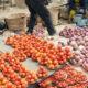 tomato price in nigeria, prices of tin tomatoes in nigeria,priceof sachet tomatoes in nigeria, currentpriceof basket of tomatoesin nigeria2020,priceoftomatopaste in nigeria,priceof basket of tomatoesinmile 12 today, tomatosales in nigeria, priceof maize per tonin nigeria2019, priceof vegetables in nigeria, onions price in nigeria, onionpricetoday in nigeria, onion business in nigeria, priceof onioninlagos, onion market in nigeria, bag of onions price, onionsdistribution business in nigeria, onions in nigeria, how much is a bag ofonions injos