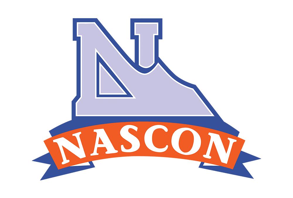 NASCON - Growth in Salt Segment Underpins Performance