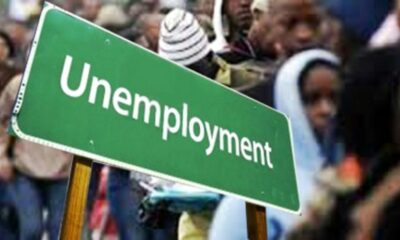 Unemployment brandnewsday 23 Million Unemployed Nigerians E-Commerce To The Rescue