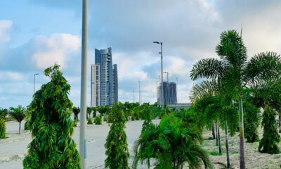 Trees-in-Eko-Atlantic-City Brandnewsday Eko Atlantic's Green City Commitment On a mission to plant over 200,000 trees