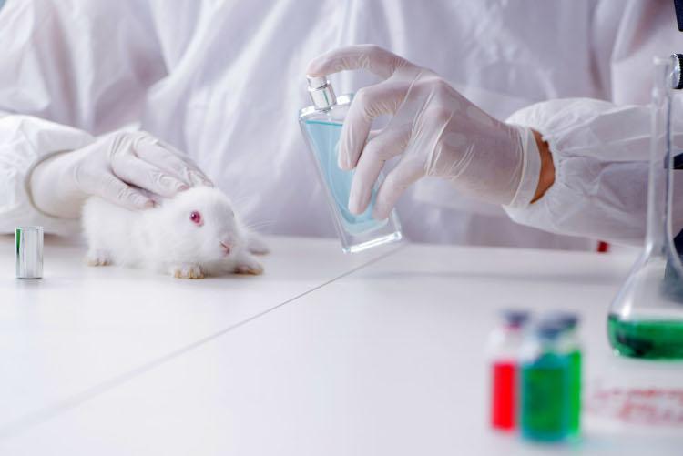 Europe's Animal Testing Ban