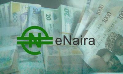 e-Naira coin, e-Naira Nigeria, e-Naira wallet,e-Naira meaning, e-Naira currency, e-Naira, e-Naira digital currency, e-Naira CBN and e-Naira launch, enaira app, enaira app download, enaira crypto, enaira website, enaira apk, enaira platform website, enaira cbn, enaira launch, cbdc, central bank digital currency,